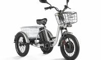 Трицикл Eltreco Porter Fat 500 UP!