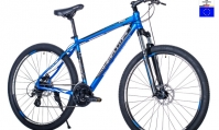 Горный велосипед Ingword PRO Disc 29 (2020)